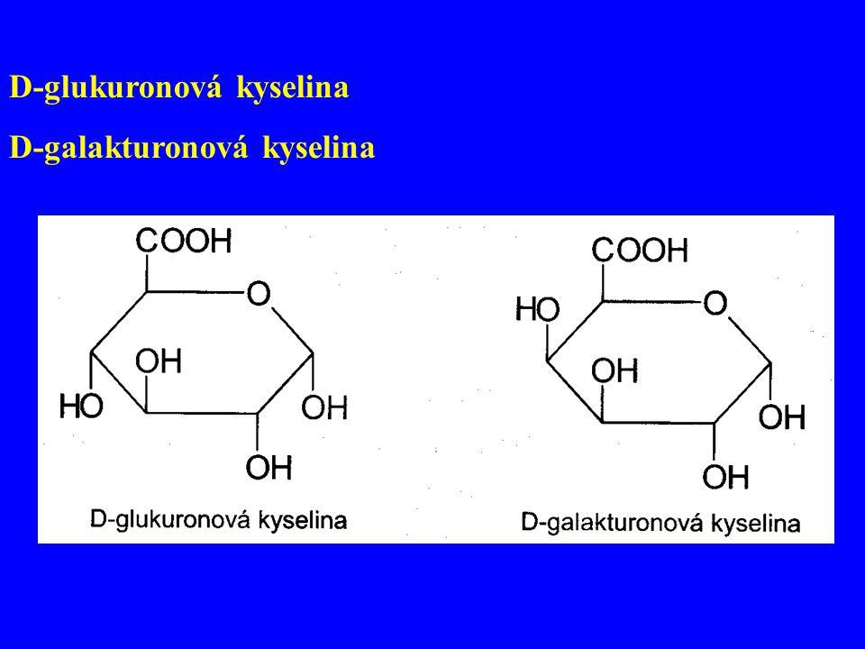D-glukuronová kyselina