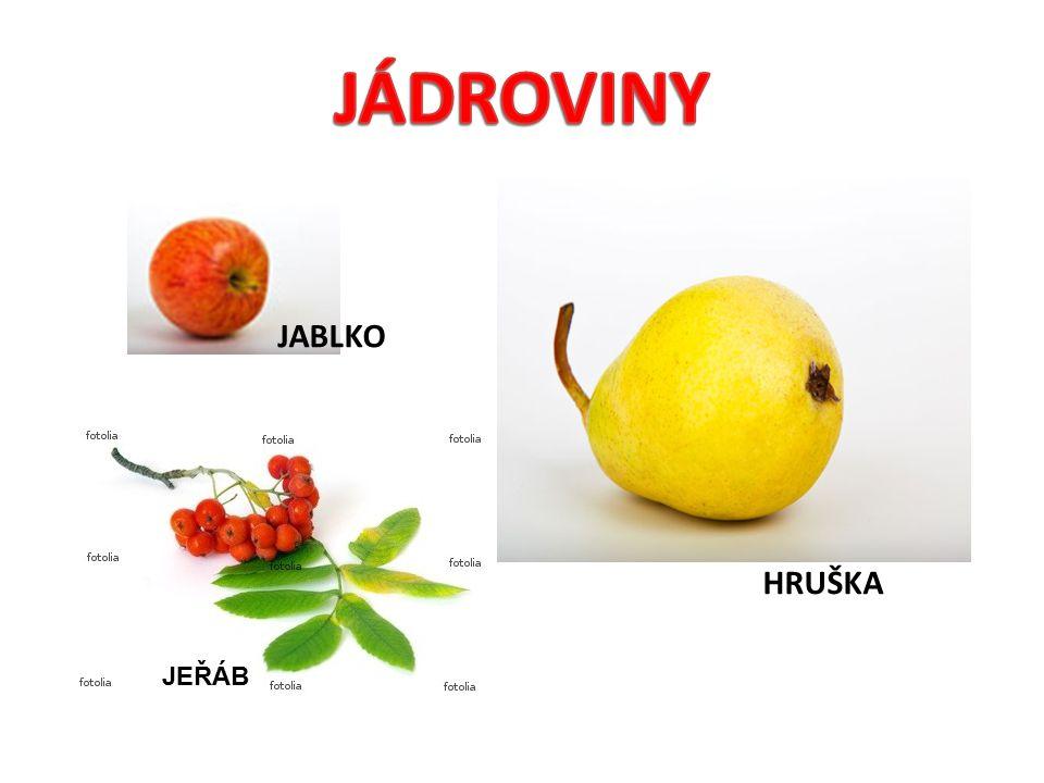 JÁDROVINY JABLKO HRUŠKA JEŘÁB