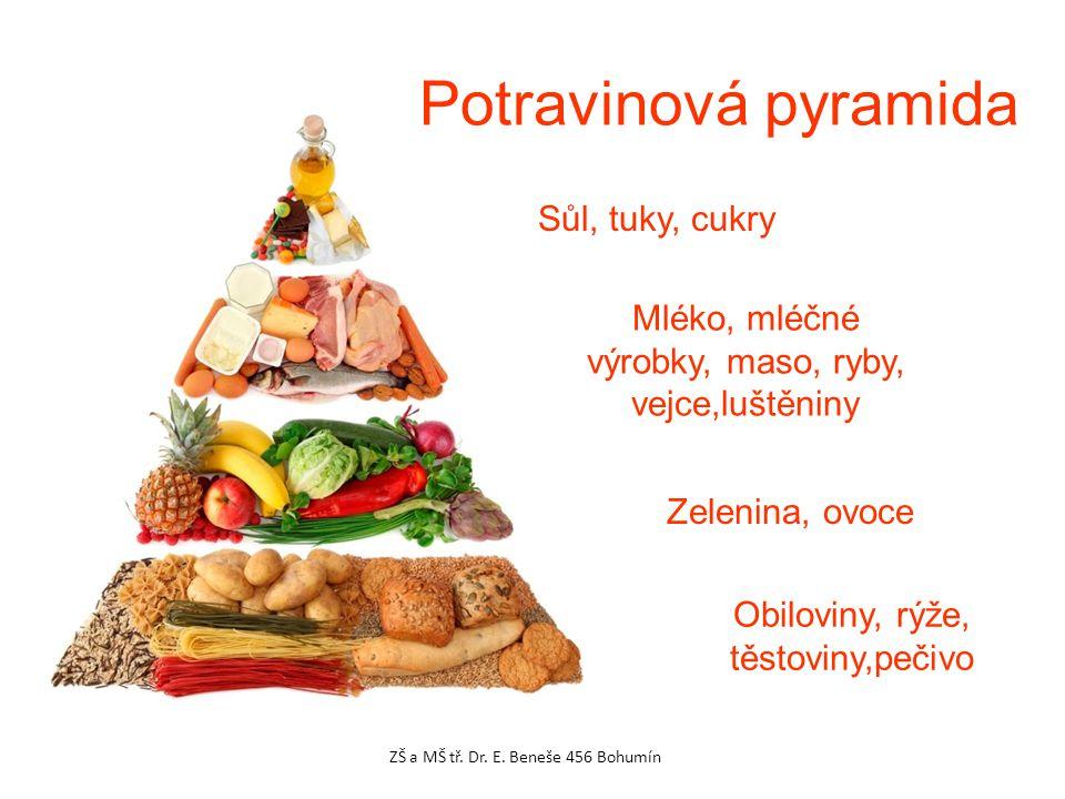 Potravinová pyramida Sůl, tuky, cukry