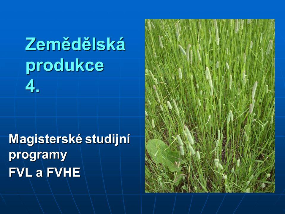 Magisterské studijní programy FVL a FVHE