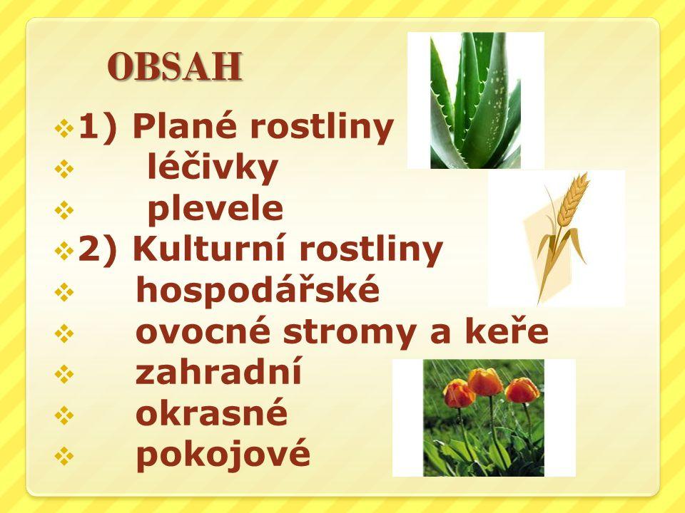 1) Plané rostliny léčivky plevele 2) Kulturní rostliny hospodářské