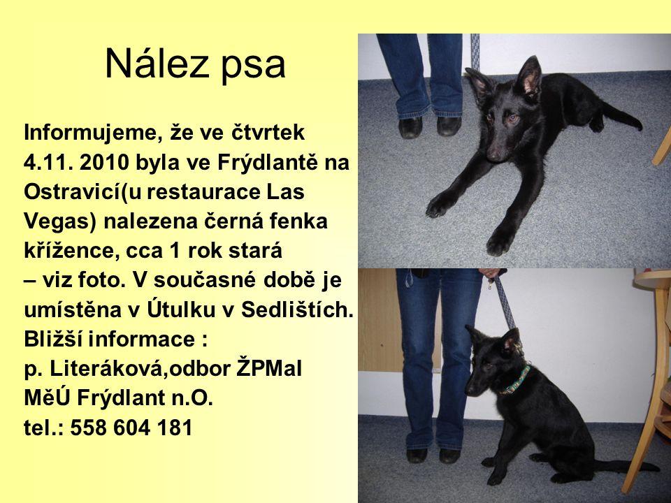 Nález psa Informujeme, že ve čtvrtek 4.11. 2010 byla ve Frýdlantě na