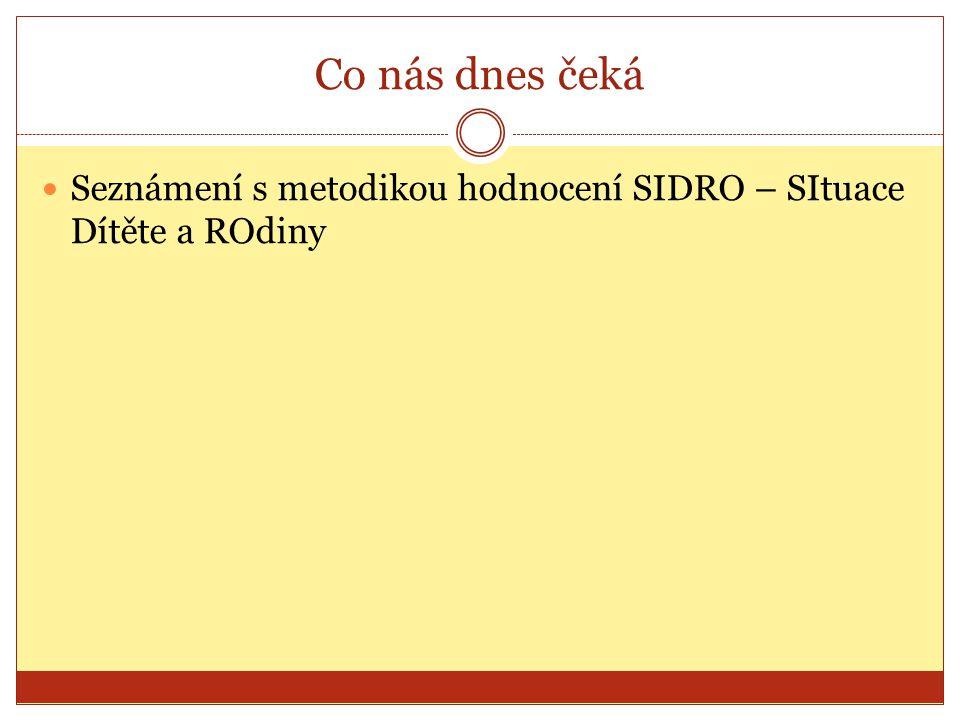 Co nás dnes čeká Seznámení s metodikou hodnocení SIDRO – SItuace Dítěte a ROdiny