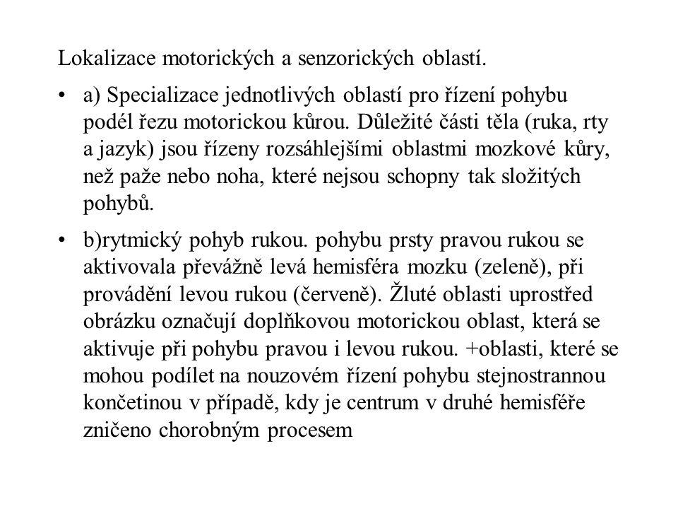 Lokalizace motorických a senzorických oblastí.