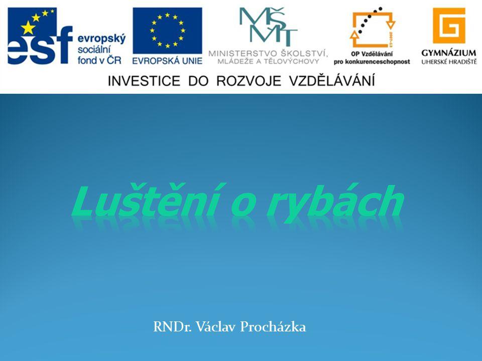 Luštění o rybách RNDr. Václav Procházka