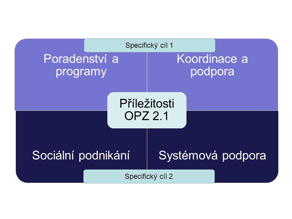 Poradenství a programy
