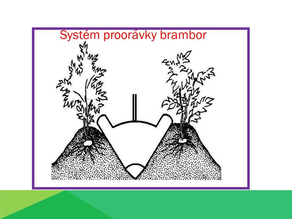 Systém proorávky brambor