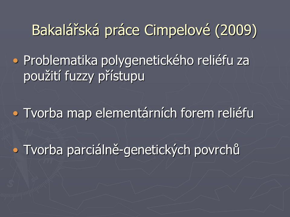Bakalářská práce Cimpelové (2009)