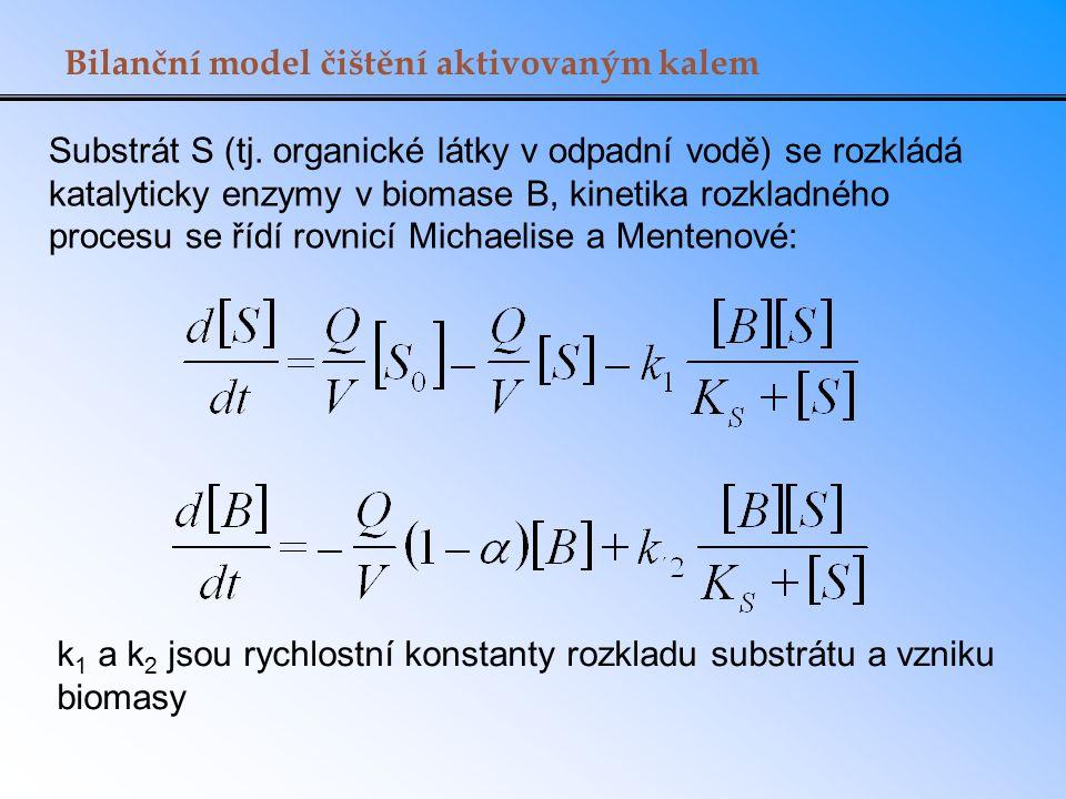 Bilanční model čištění aktivovaným kalem