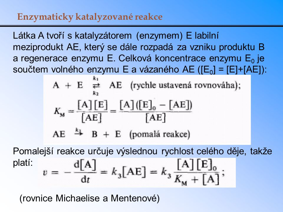 Enzymaticky katalyzované reakce