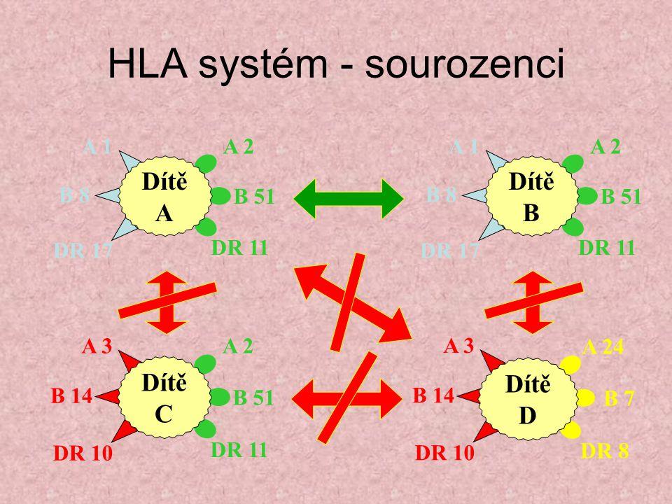 HLA systém - sourozenci