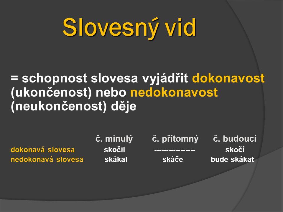 Slovesný vid = schopnost slovesa vyjádřit dokonavost (ukončenost) nebo nedokonavost (neukončenost) děje.
