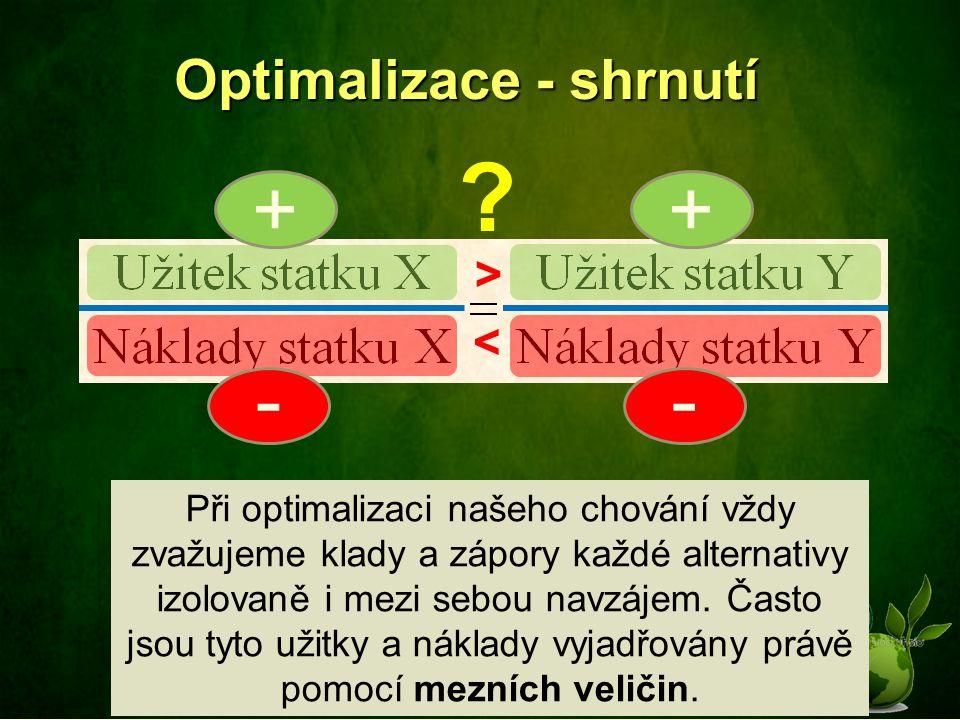 Optimalizace - shrnutí