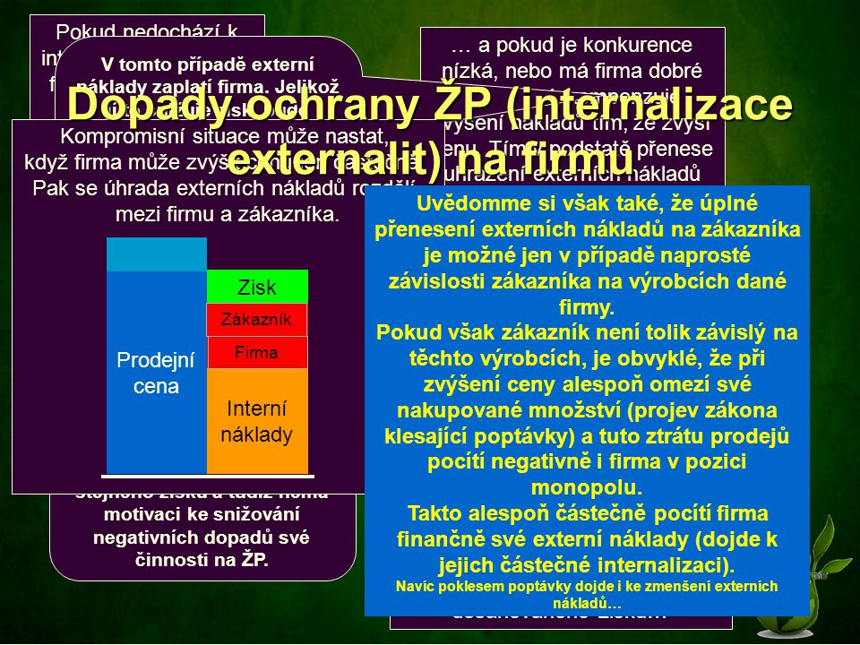 Dopady ochrany ŽP (internalizace externalit) na firmu