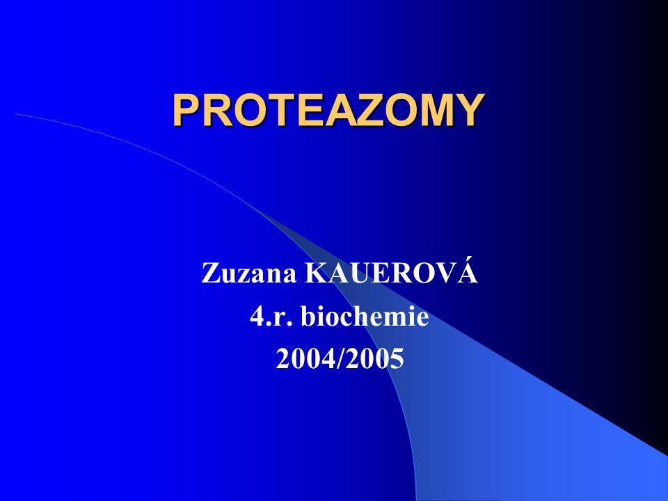 Zuzana KAUEROVÁ 4.r. biochemie 2004/2005
