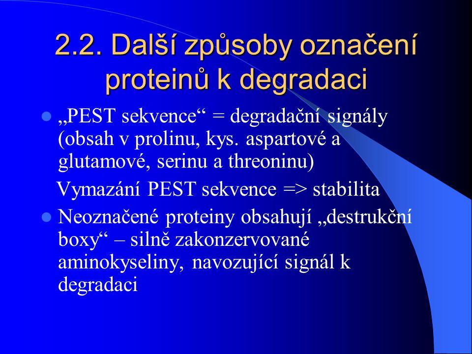 2.2. Další způsoby označení proteinů k degradaci
