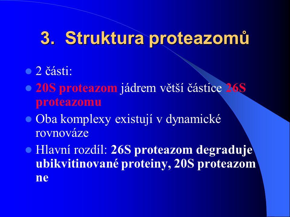 3. Struktura proteazomů 2 části: