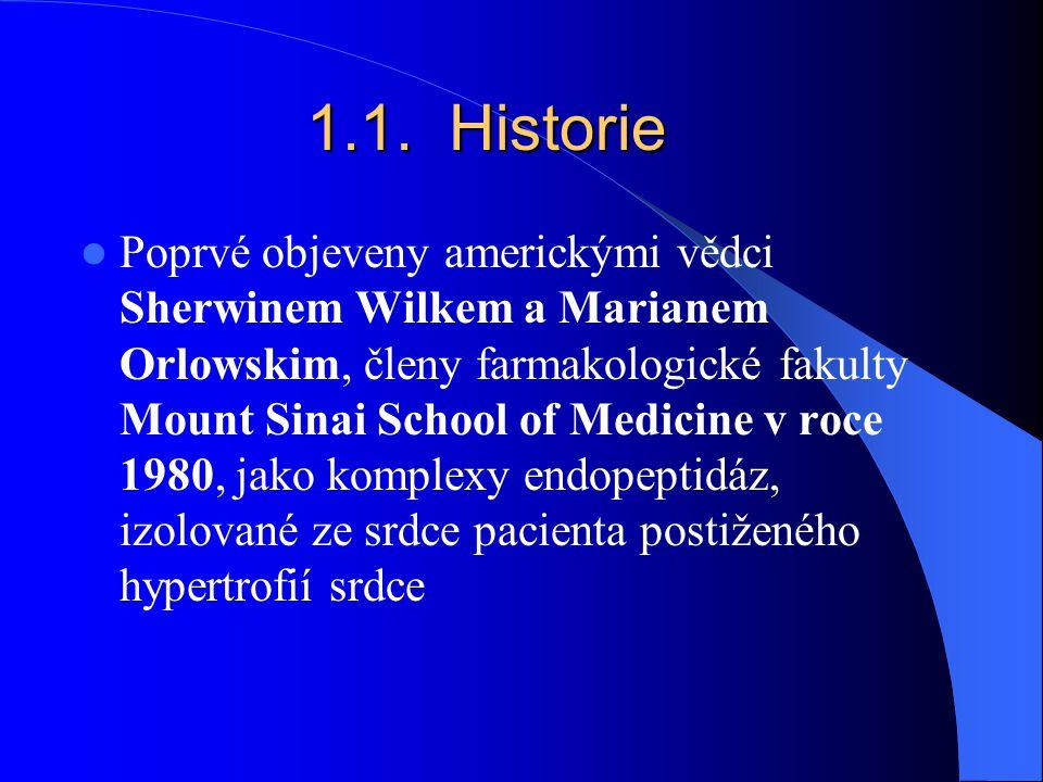 1.1. Historie