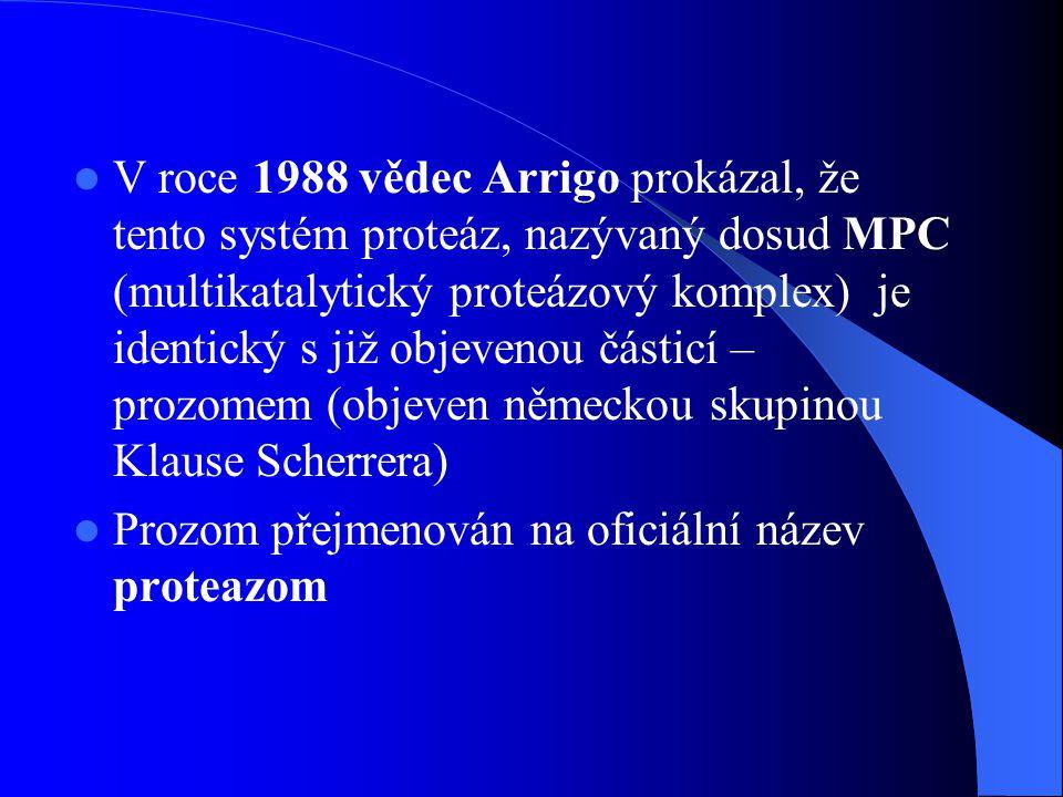 V roce 1988 vědec Arrigo prokázal, že tento systém proteáz, nazývaný dosud MPC (multikatalytický proteázový komplex) je identický s již objevenou částicí – prozomem (objeven německou skupinou Klause Scherrera)