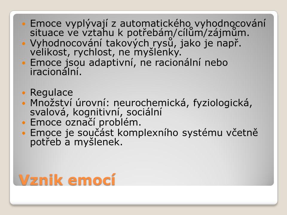 Emoce vyplývají z automatického vyhodnocování situace ve vztahu k potřebám/cílům/zájmům.