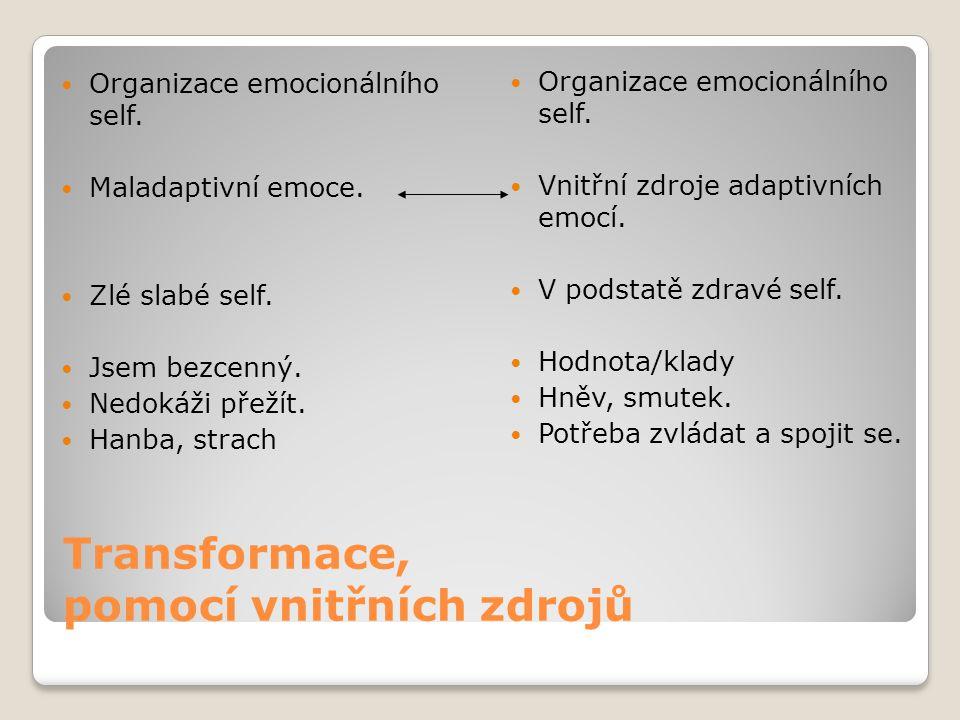 Transformace, pomocí vnitřních zdrojů