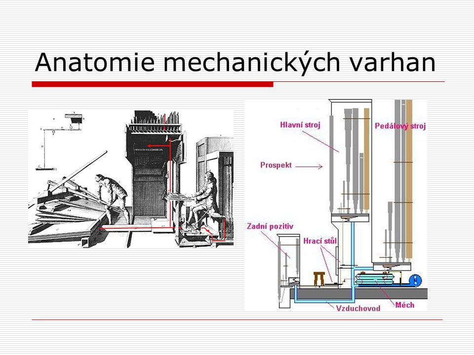 Anatomie mechanických varhan