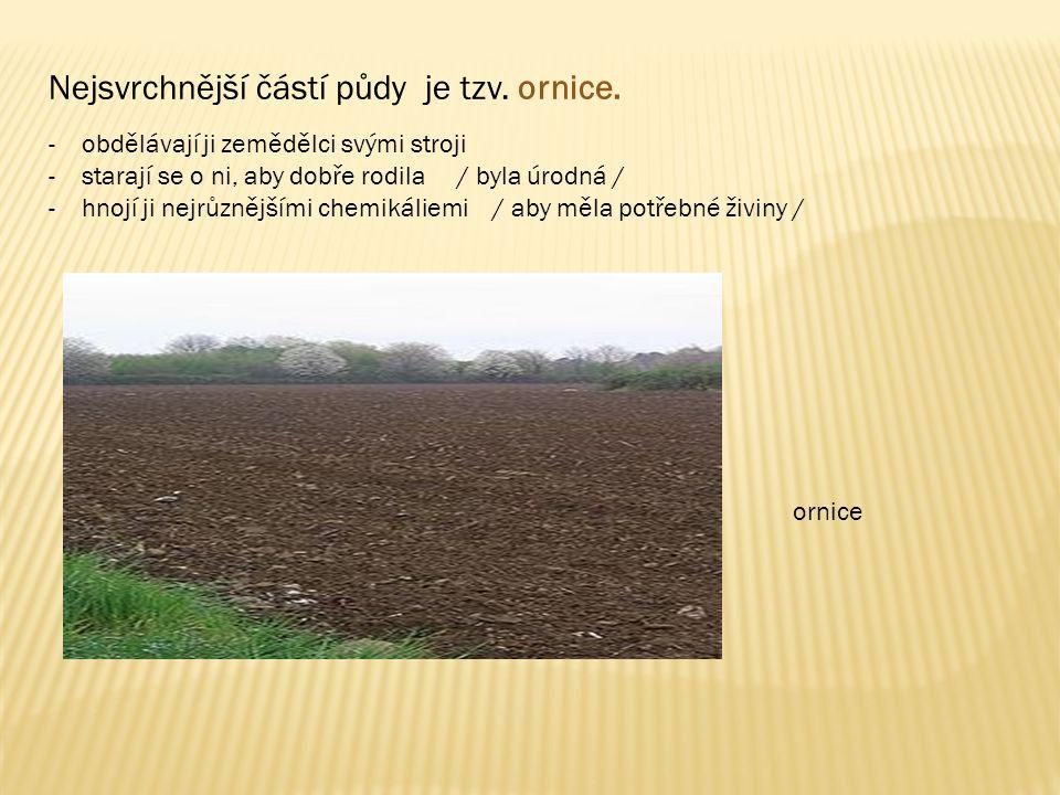 Nejsvrchnější částí půdy je tzv. ornice.