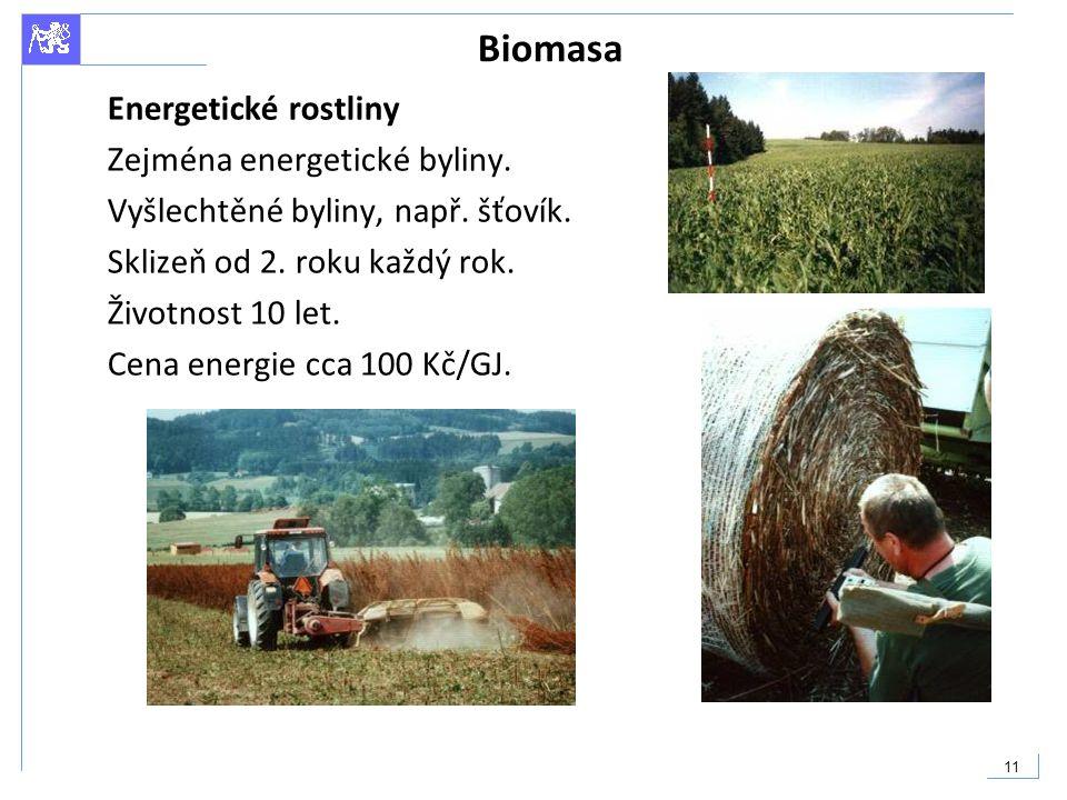 Biomasa Energetické rostliny Zejména energetické byliny.