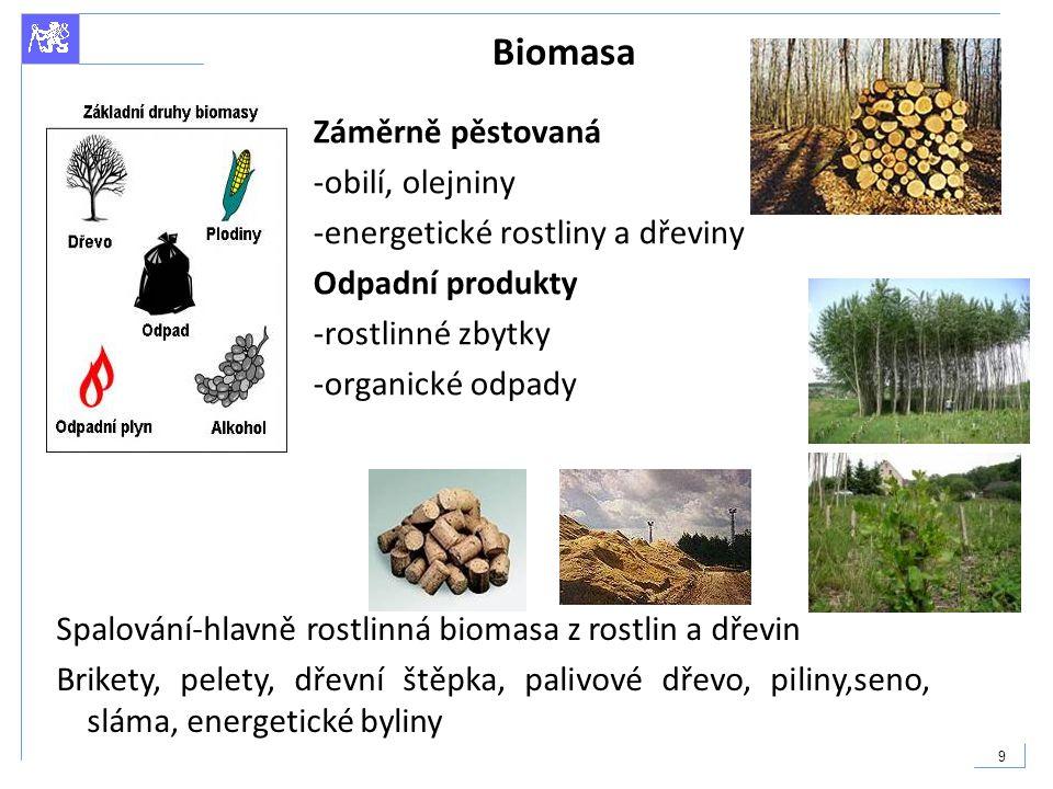 Biomasa Záměrně pěstovaná -obilí, olejniny