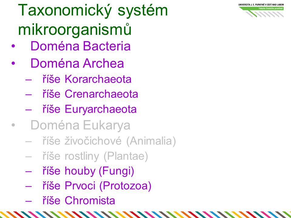 Taxonomický systém mikroorganismů