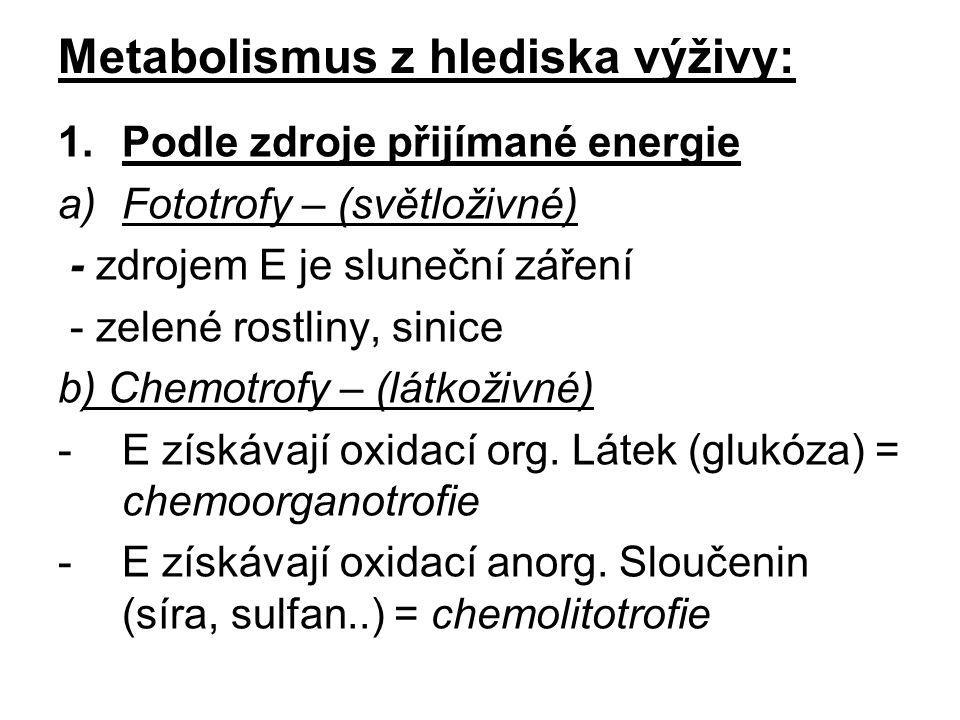 Metabolismus z hlediska výživy: