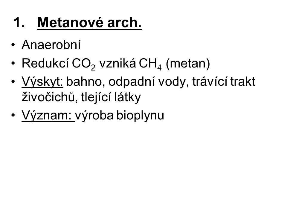 Metanové arch. Anaerobní Redukcí CO2 vzniká CH4 (metan)