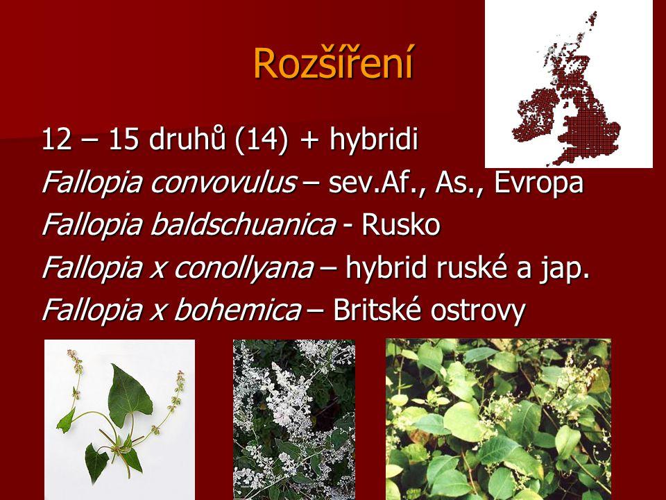 Rozšíření 12 – 15 druhů (14) + hybridi