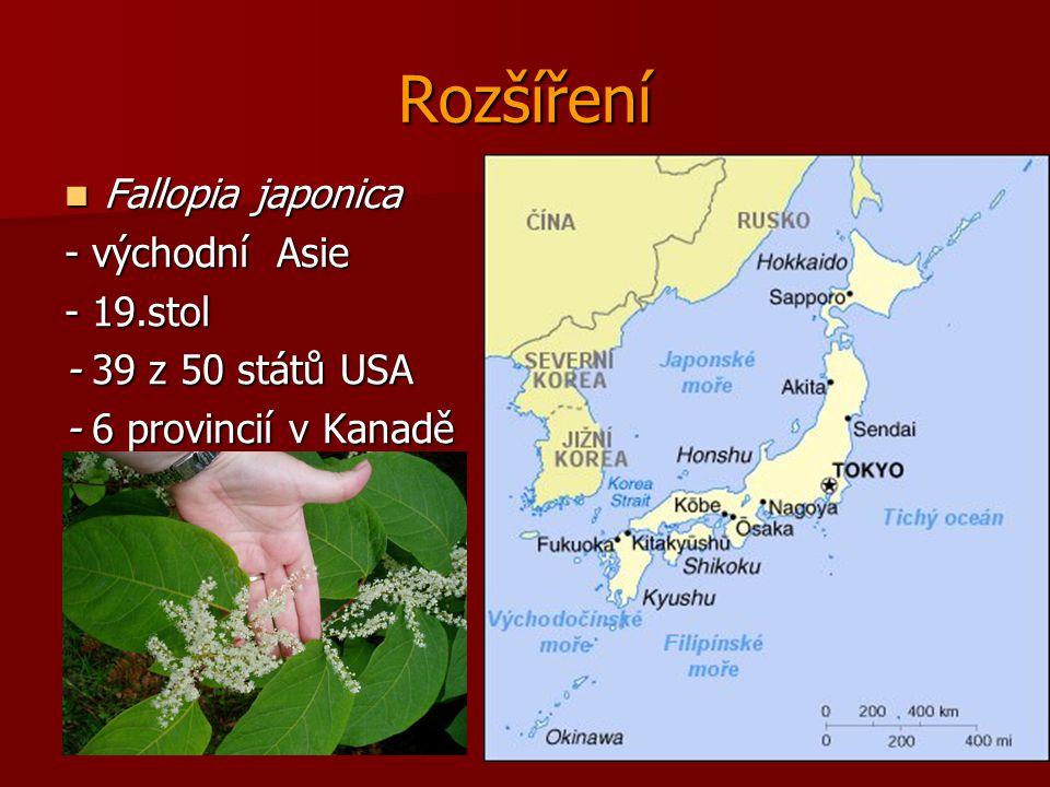 Rozšíření Fallopia japonica - východní Asie - 19.stol