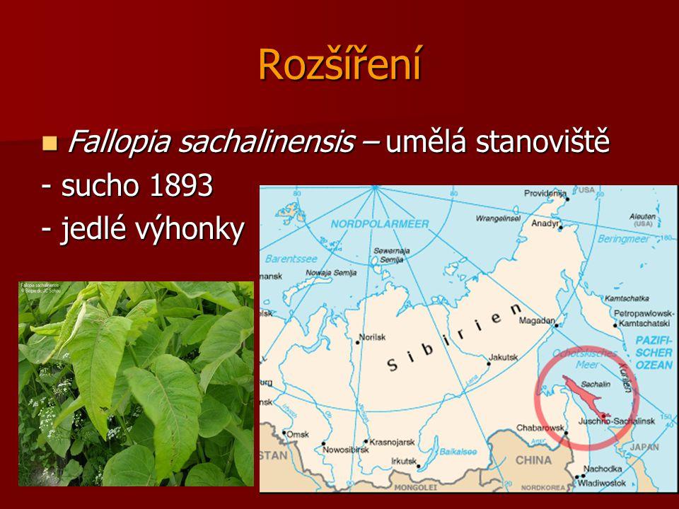 Rozšíření Fallopia sachalinensis – umělá stanoviště - sucho 1893