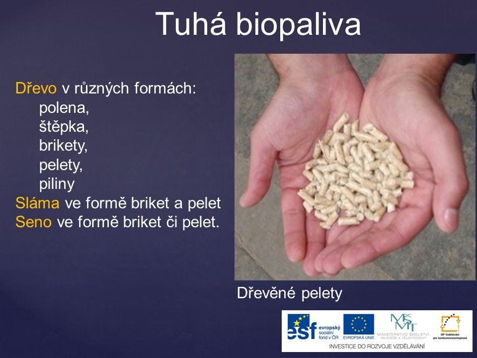 Tuhá biopaliva Dřevo v různých formách: polena, štěpka, brikety,