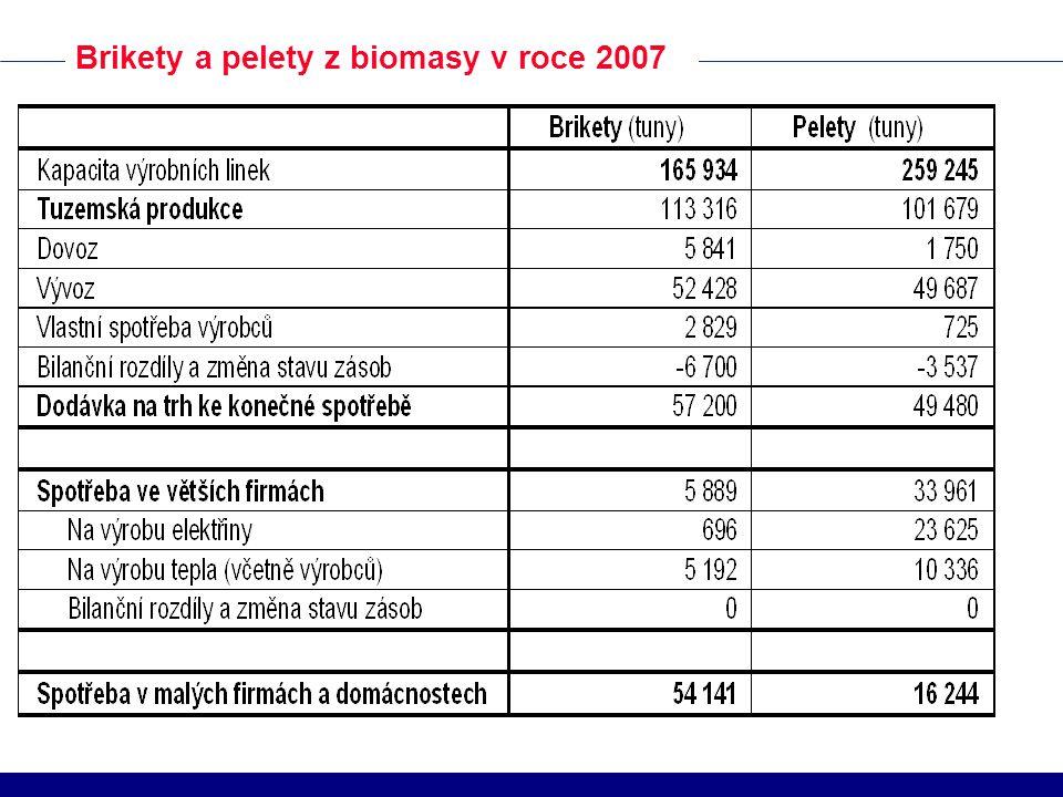 Brikety a pelety z biomasy v roce 2007