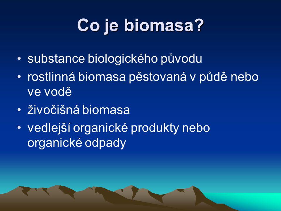 Co je biomasa substance biologického původu