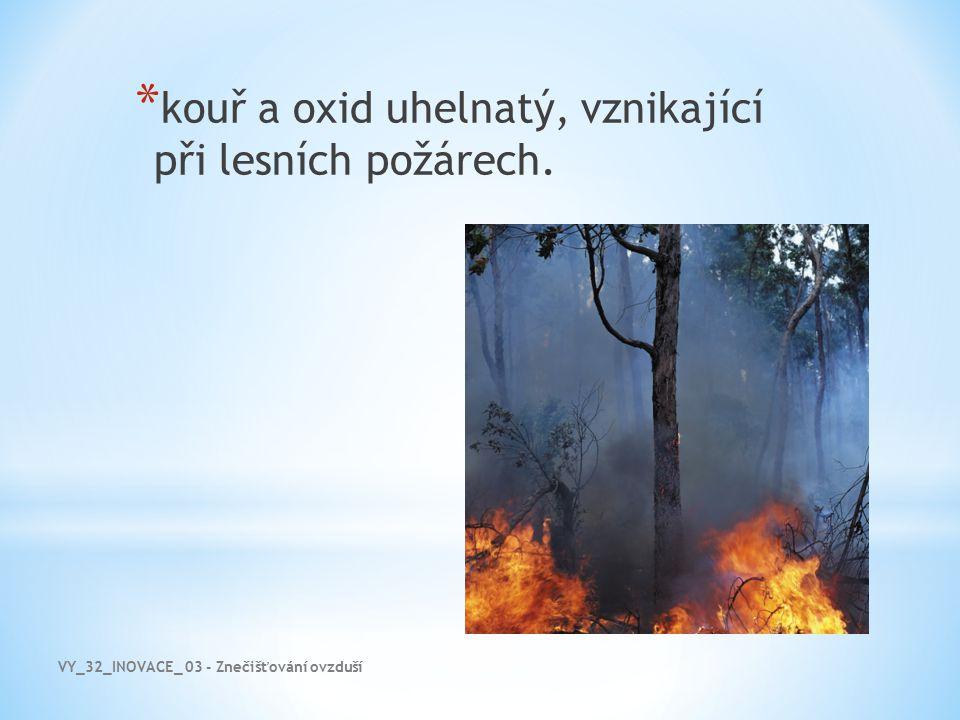 kouř a oxid uhelnatý, vznikající při lesních požárech.