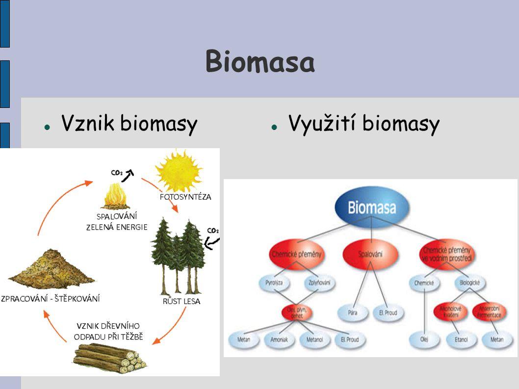 Biomasa Vznik biomasy Využití biomasy