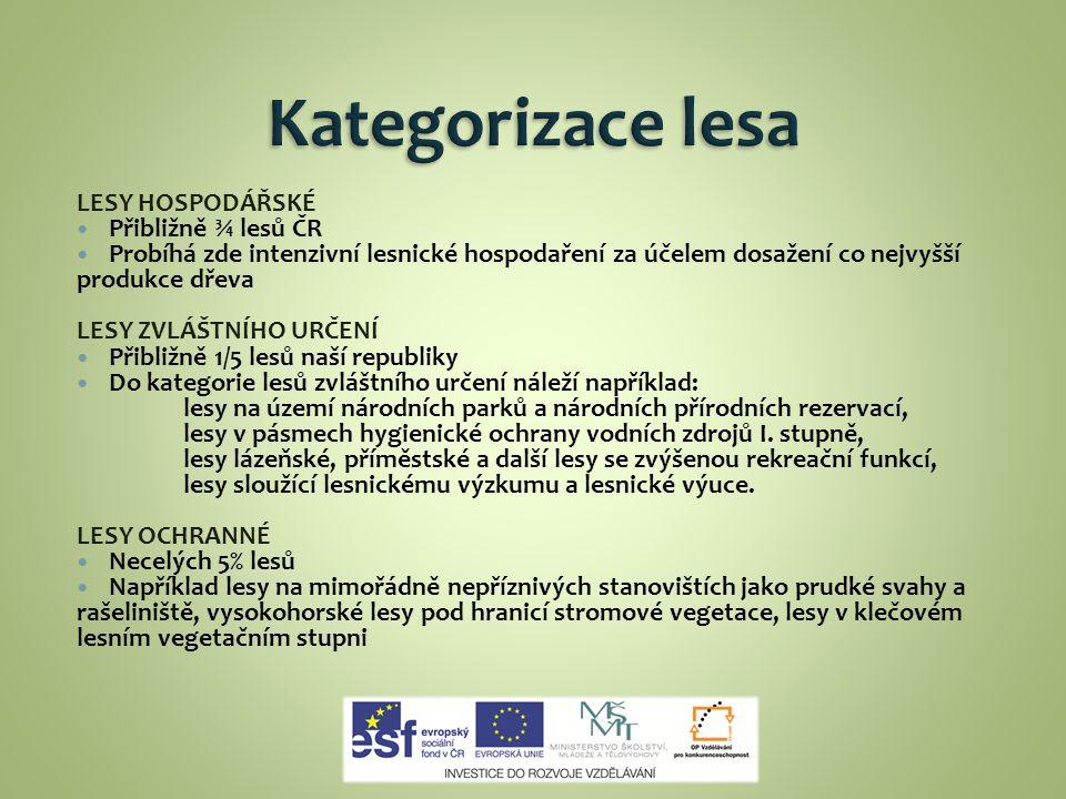 Kategorizace lesa LESY HOSPODÁŘSKÉ Přibližně ¾ lesů ČR