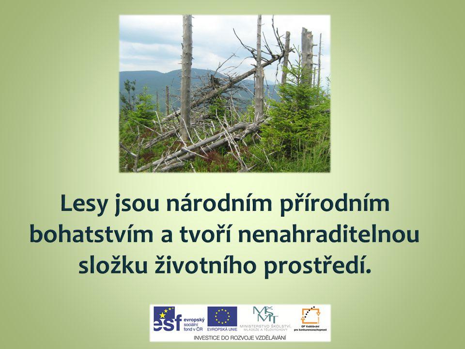 Lesy jsou národním přírodním bohatstvím a tvoří nenahraditelnou složku životního prostředí.