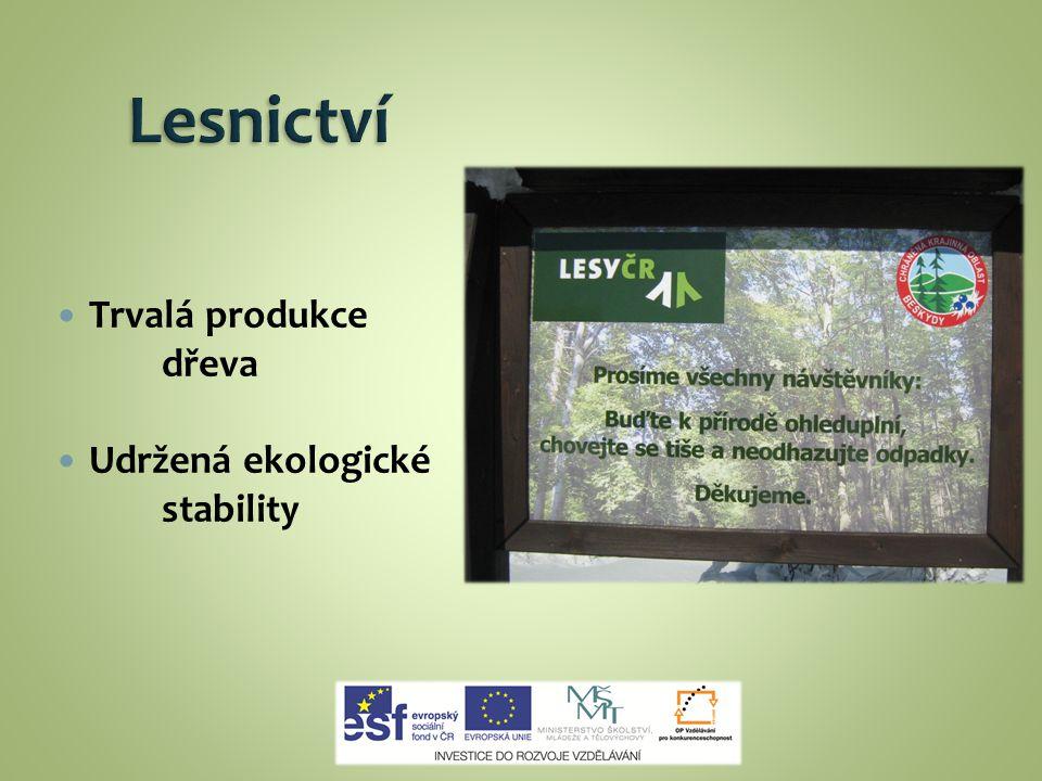 Lesnictví Trvalá produkce dřeva Udržená ekologické stability