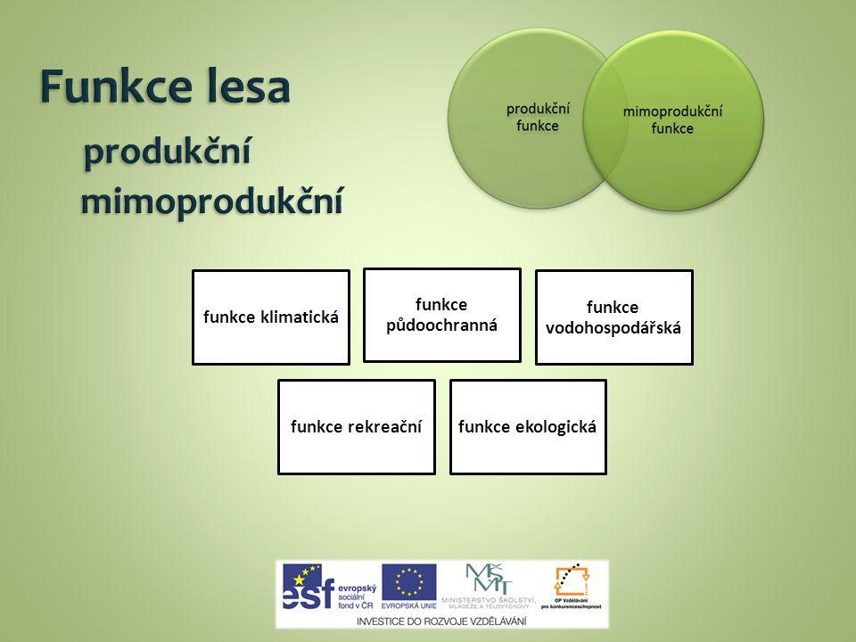Funkce lesa produkční mimoprodukční