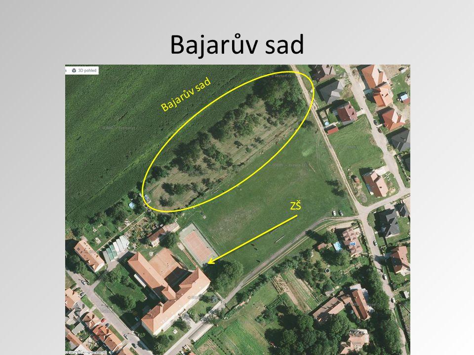 Bajarův sad Bajarův sad ZŠ