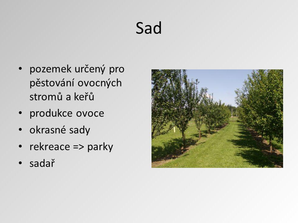 Sad pozemek určený pro pěstování ovocných stromů a keřů produkce ovoce