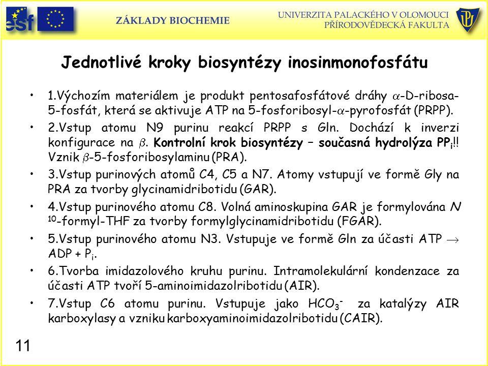 Jednotlivé kroky biosyntézy inosinmonofosfátu
