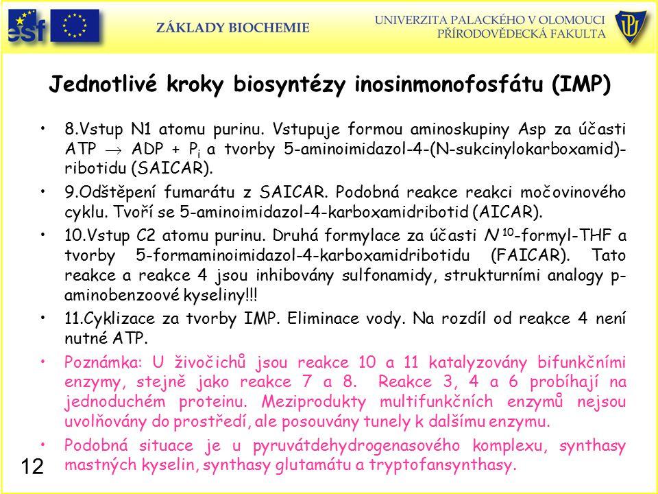 Jednotlivé kroky biosyntézy inosinmonofosfátu (IMP)