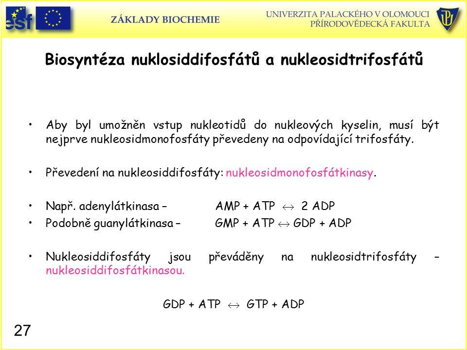 Biosyntéza nuklosiddifosfátů a nukleosidtrifosfátů