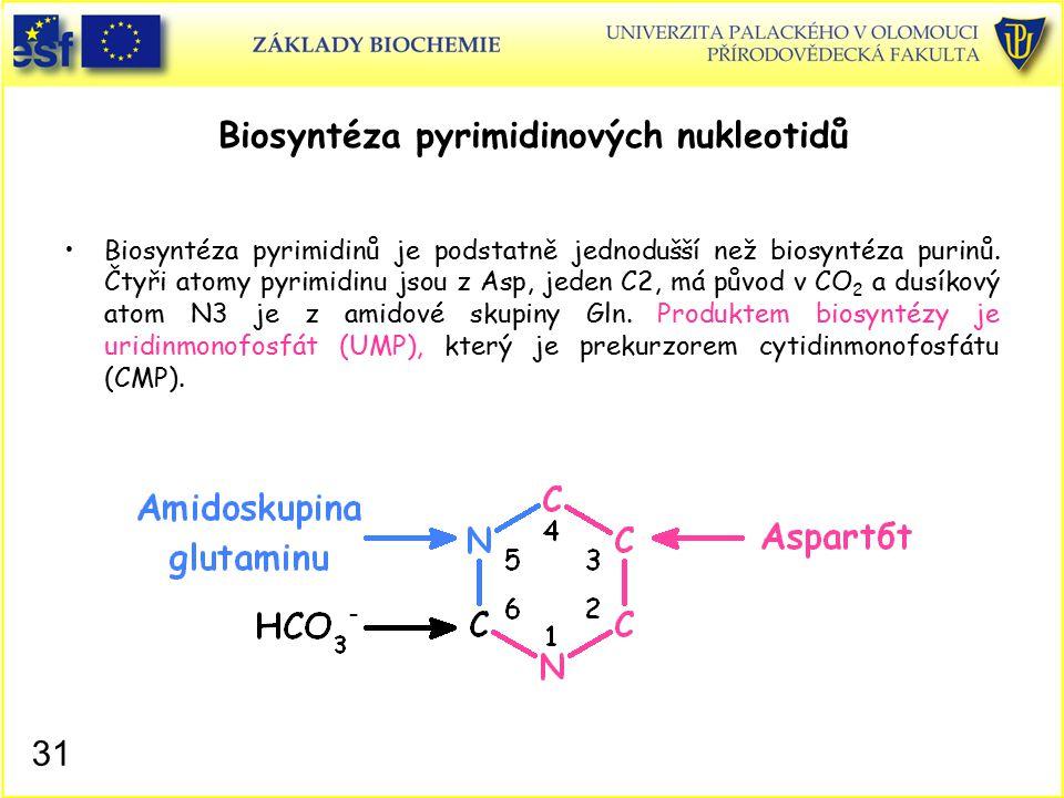 Biosyntéza pyrimidinových nukleotidů
